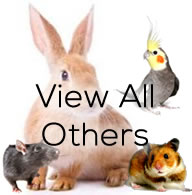 View All Critters