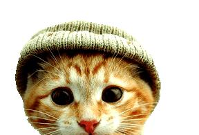 Tubes Gatos.... - Página 3 Cat_small